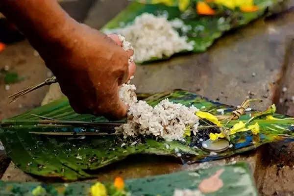 pitru paksha 2020: चावल से क्यों बनाए जाते है पिंड और क्या है कुशा का महत्व, जानिए