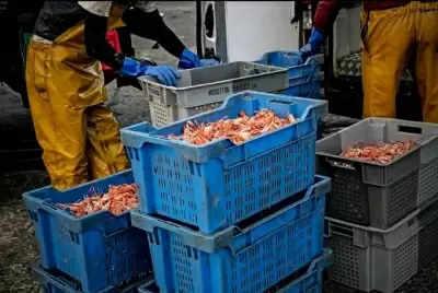 EU Council ने मछली पकड़ने के अवसरों पर यूके के साथ समझौते को मंजूरी दी