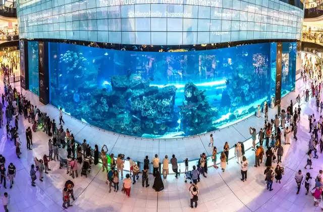 दुनिया के 5 सबसे बड़े और खूबसूरत Aquariums