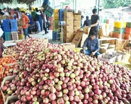 Kullu कुल्लू सेब बागवानों के बचाव में उतरे हिमाचल के युवा