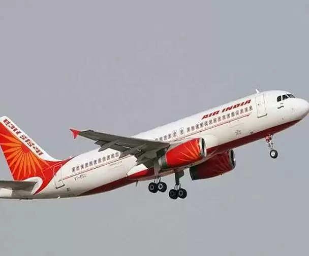 Raipur चिड़िया से टकराने के बाद दिल्ली जा रही एआई फ्लाइट ने टेकऑफ़ रद्द किया