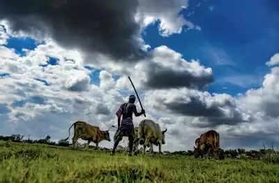 Madhya Pradesh में खाद पर संग्राम, किसानों पर लाठीचार्ज
