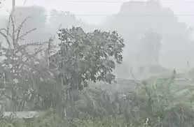 Nashik नासिक जिले में तीन दिनों तक होगी भारी बारिश