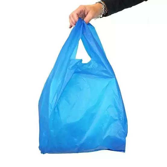 Indore प्रतिबंधित पॉलीथिन बैग रखने के दो गोदाम सील