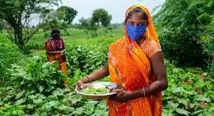 Mandi सब्जी बेच कमाई कर रही महिलाएं